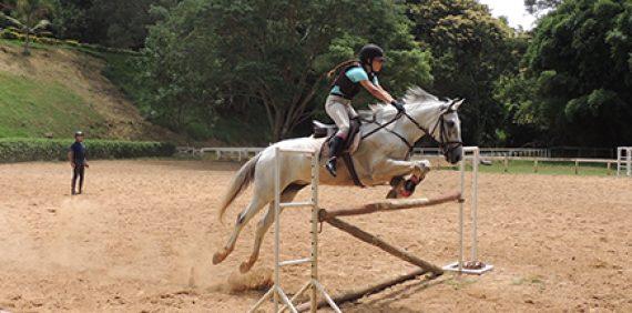 Salto, adestramento e enduro